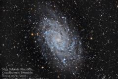 Galassia M 33